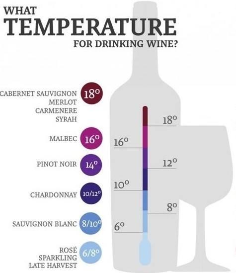 Informația grafică despre temperatura corectă la care se servește un vin