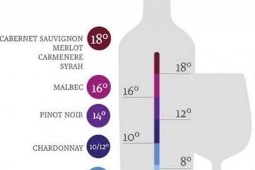 Правильная температура подачи вина