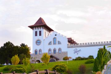 Chateau Purcari tours