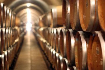 winery Vinuri Ialoveni