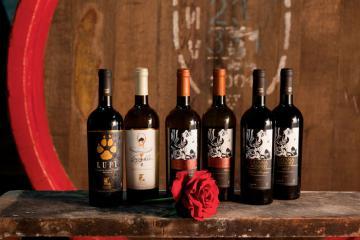 вина компании Gitana Winery