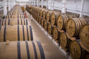 wine-brandy factory KVINT