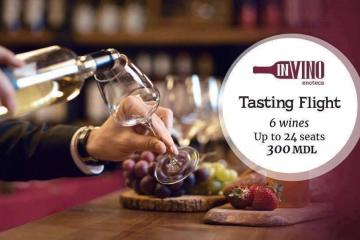 degustarea vinurilor moldovenești Cabernet-Merlot  în vinotecă