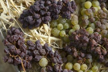 Вино из винограда позднего сбора