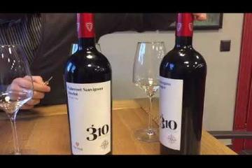 Embedded thumbnail for Приглашаем вас познакомится с 3 красными винами из серии 310 Altitudine от F'autor